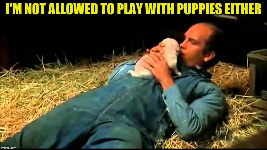 I'M NOT ALLOWED TO PLAY WITH PUPPIES EITHER | made w/ Imgflip meme maker