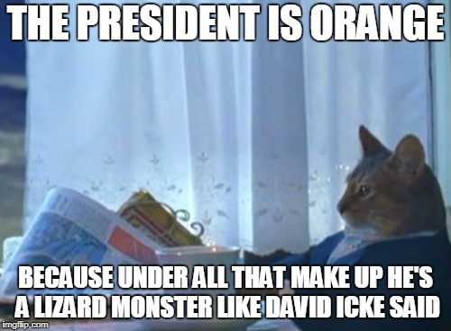 I Should Buy A Boat Cat | THE PRESIDENT IS ORANGE BECAUSE UNDER ALL THAT MAKE UP HE'S A LIZARD MONSTER LIKE DAVID ICKE SAID | image tagged in memes,i should buy a boat cat,fake news,david icke,donald trump,orange trump | made w/ Imgflip meme maker