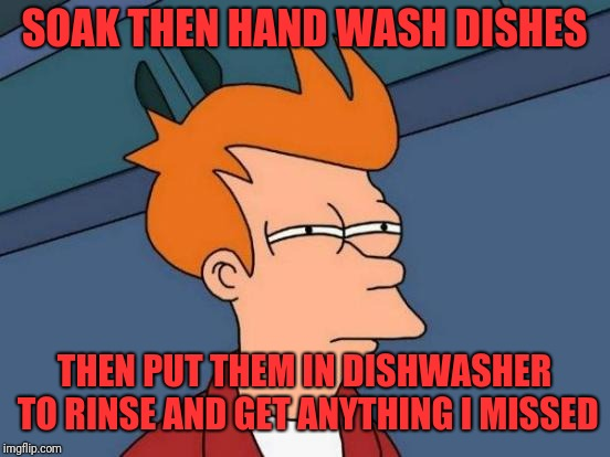 Futurama Fry Meme | SOAK THEN HAND WASH DISHES THEN PUT THEM IN DISHWASHER TO RINSE AND GET ANYTHING I MISSED | image tagged in memes,futurama fry | made w/ Imgflip meme maker