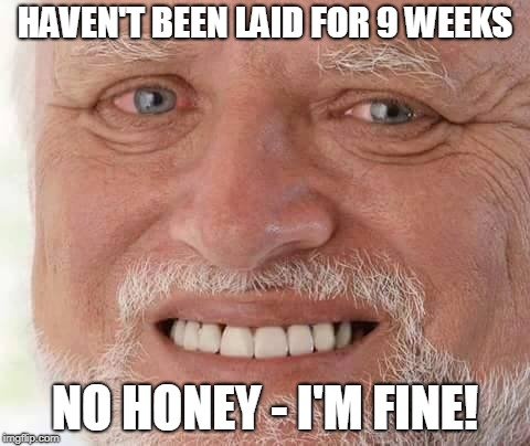 harold smiling | HAVEN'T BEEN LAID FOR 9 WEEKS NO HONEY - I'M FINE! | image tagged in harold smiling | made w/ Imgflip meme maker