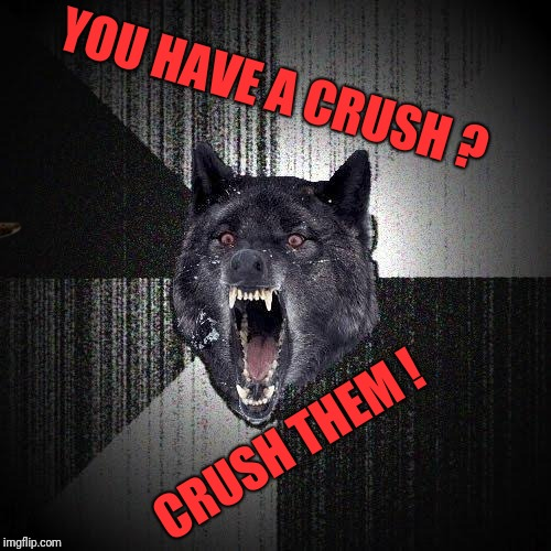Insanity Wolf Meme | YOU HAVE A CRUSH ? CRUSH THEM ! | image tagged in memes,insanity wolf,scumbag | made w/ Imgflip meme maker