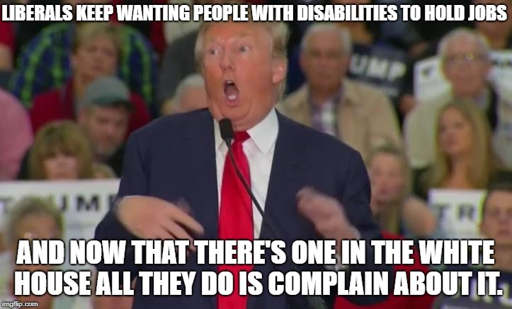 LIBERALS KEEP WANTING PEOPLE WITH DISABILITIES TO HOLD JOBS AND NOW THAT THERE'S ONE IN THE WHITE HOUSE ALL THEY DO IS COMPLAIN ABOUT IT. | image tagged in donald trump mocking disabled | made w/ Imgflip meme maker