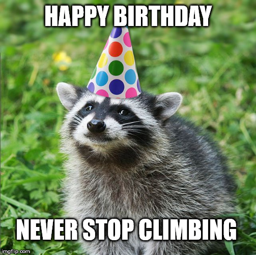 Happy Birthday From Motivational Raccoon | HAPPY BIRTHDAY NEVER STOP CLIMBING | image tagged in happy birthday,motivational,raccoon,mpr raccoon,never give up,feel good | made w/ Imgflip meme maker