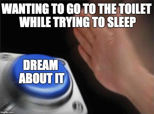 Blank Nut Button Meme | WANTING TO GO TO THE TOILET WHILE TRYING TO SLEEP DREAM ABOUT IT | image tagged in memes,blank nut button | made w/ Imgflip meme maker