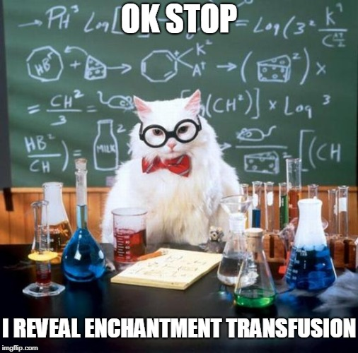 Chemistry Cat Meme | OK STOP I REVEAL ENCHANTMENT TRANSFUSION | image tagged in memes,chemistry cat | made w/ Imgflip meme maker