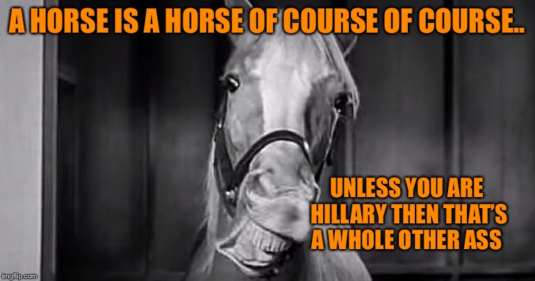 A HORSE IS A HORSE OF COURSE OF COURSE.. UNLESS YOU ARE HILLARY THEN THAT'S A WHOLE OTHER ASS | made w/ Imgflip meme maker