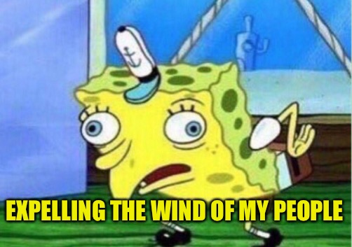 Mocking Spongebob Meme | EXPELLING THE WIND OF MY PEOPLE | image tagged in memes,mocking spongebob | made w/ Imgflip meme maker
