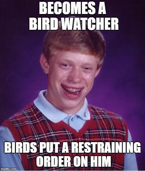 Privacy Invasion | BECOMES A BIRD WATCHER BIRDS PUT A RESTRAINING ORDER ON HIM | image tagged in memes,bad luck brian,stalker | made w/ Imgflip meme maker