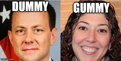 DUMMY GUMMY | image tagged in strzok and page | made w/ Imgflip meme maker