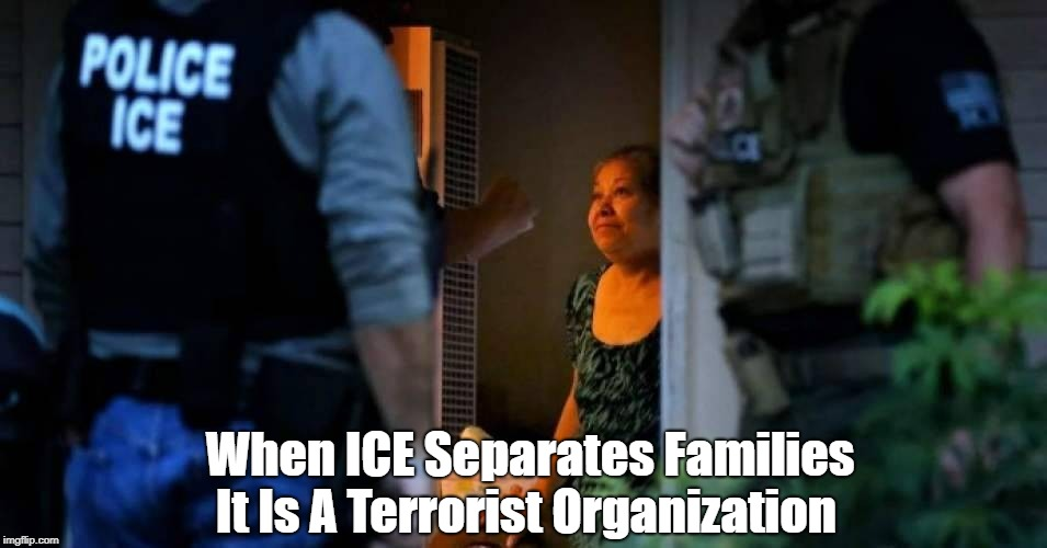 When ICE Separates Families It Is A Terrorist Organization | made w/ Imgflip meme maker