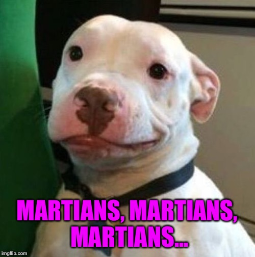 Awkward Dog | MARTIANS, MARTIANS, MARTIANS... | image tagged in awkward dog | made w/ Imgflip meme maker