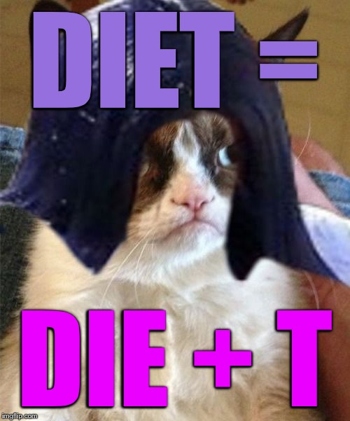 Grumpy doMima (flipped) | DIET = DIE + T | image tagged in grumpy domima flipped | made w/ Imgflip meme maker