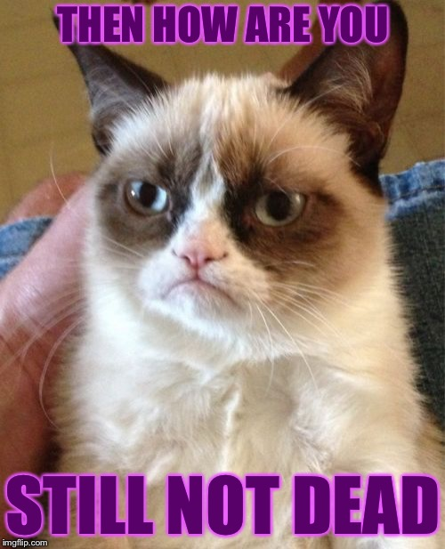 Grumpy Cat Meme | THEN HOW ARE YOU STILL NOT DEAD | image tagged in memes,grumpy cat | made w/ Imgflip meme maker