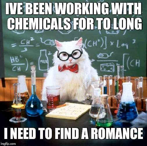 Chemistry Cat | IVE BEEN WORKING WITH CHEMICALS FOR TO LONG I NEED TO FIND A ROMANCE | image tagged in memes,chemistry cat | made w/ Imgflip meme maker