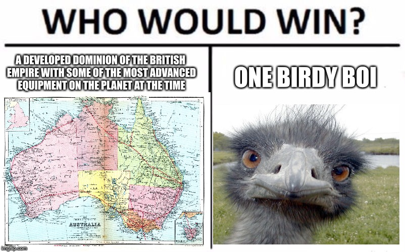 Lots of Emus on the barbie | A DEVELOPED DOMINION OF THE BRITISH EMPIRE WITH SOME OF THE MOST ADVANCED EQUIPMENT ON THE PLANET AT THE TIME ONE BIRDY BOI | image tagged in memes,australia,emu,failure | made w/ Imgflip meme maker