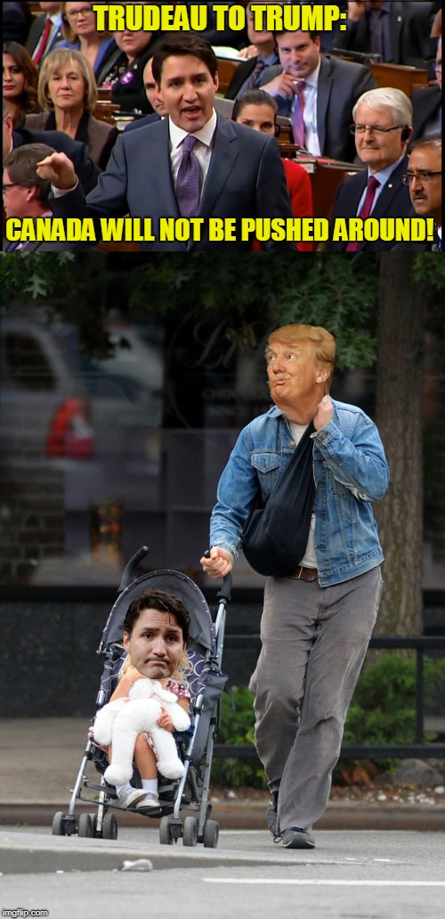 A Comment Like That Was Just Begging For a Meme | TRUDEAU TO TRUMP: CANADA WILL NOT BE PUSHED AROUND! | image tagged in justin trudeau,donald trump,owned | made w/ Imgflip meme maker