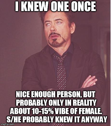Face You Make Robert Downey Jr Meme | I KNEW ONE ONCE NICE ENOUGH PERSON, BUT PROBABLY ONLY IN REALITY ABOUT 10-15% VIBE OF FEMALE.  S/HE PROBABLY KNEW IT ANYWAY | image tagged in memes,face you make robert downey jr | made w/ Imgflip meme maker