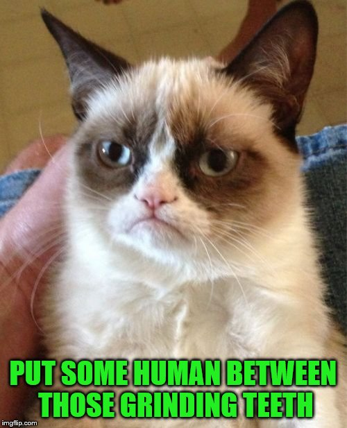 Grumpy Cat Meme | PUT SOME HUMAN BETWEEN THOSE GRINDING TEETH | image tagged in memes,grumpy cat | made w/ Imgflip meme maker