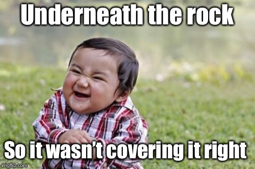 Evil Toddler Meme | Underneath the rock So it wasn't covering it right | image tagged in memes,evil toddler | made w/ Imgflip meme maker