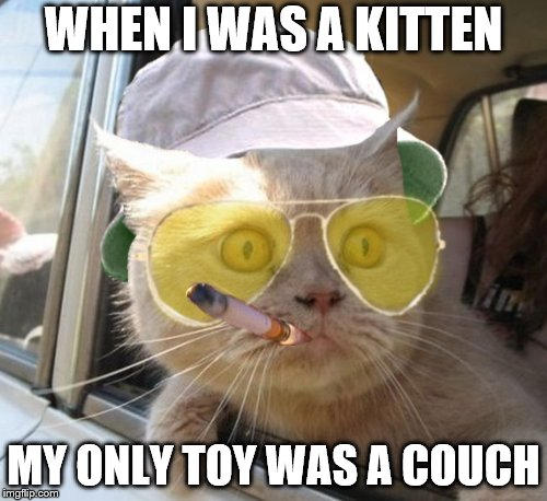Fear And Loathing Cat Meme | WHEN I WAS A KITTEN MY ONLY TOY WAS A COUCH | image tagged in memes,fear and loathing cat | made w/ Imgflip meme maker