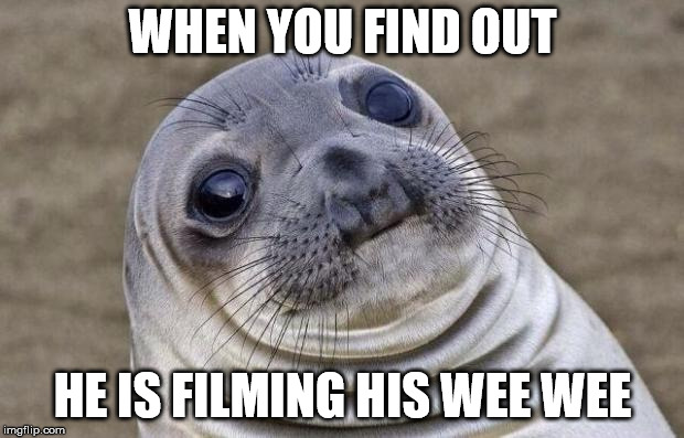 Awkward Moment Sealion Meme | WHEN YOU FIND OUT HE IS FILMING HIS WEE WEE | image tagged in memes,awkward moment sealion | made w/ Imgflip meme maker