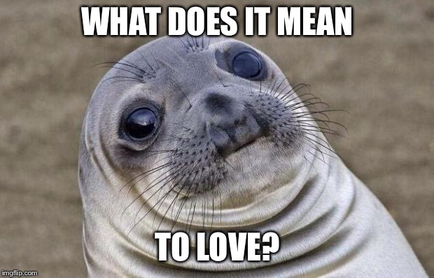 Awkward Moment Sealion Meme | WHAT DOES IT MEAN TO LOVE? | image tagged in memes,awkward moment sealion | made w/ Imgflip meme maker