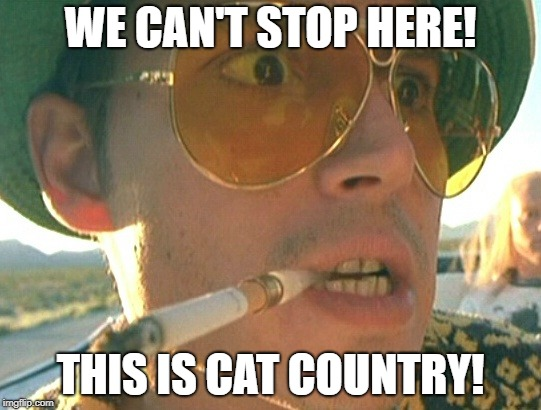 WE CAN'T STOP HERE! THIS IS CAT COUNTRY! | made w/ Imgflip meme maker