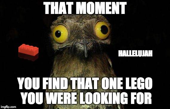 Weird Stuff I Do Potoo | THAT MOMENT YOU FIND THAT ONE LEGO YOU WERE LOOKING FOR HALLELUJAH | image tagged in memes,weird stuff i do potoo | made w/ Imgflip meme maker