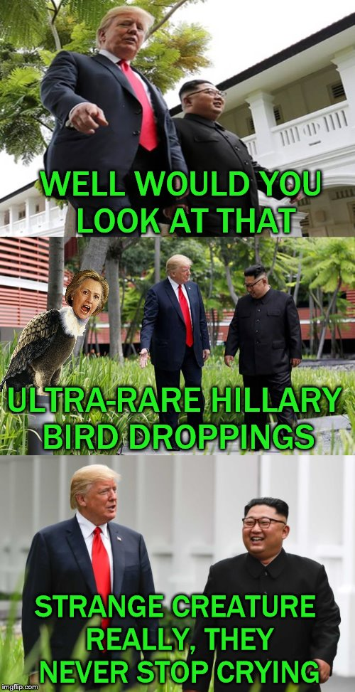 Tip of the hat to DarthFunk. | WELL WOULD YOU LOOK AT THAT ULTRA-RARE HILLARY BIRD DROPPINGS STRANGE CREATURE REALLY, THEY NEVER STOP CRYING | image tagged in memes,funny,trump,kim,summit,hillary clinton | made w/ Imgflip meme maker
