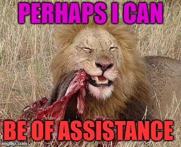 PERHAPS I CAN BE OF ASSISTANCE | made w/ Imgflip meme maker