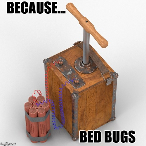 TNT for Bed Bugs | BECAUSE... BED BUGS | image tagged in tnt,bomb,bedbugs,dynamite,funny | made w/ Imgflip meme maker