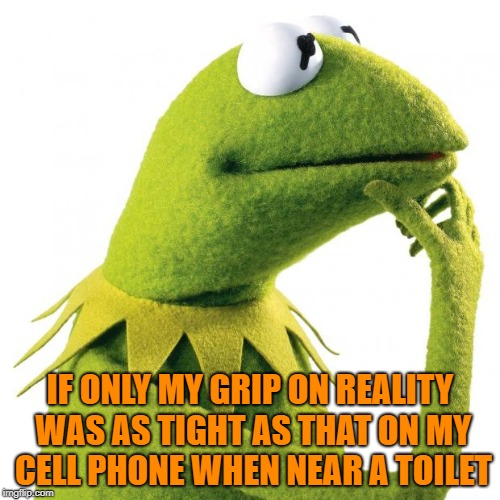 IF ONLY MY GRIP ON REALITY WAS AS TIGHT AS THAT ON MY CELL PHONE WHEN NEAR A TOILET | image tagged in kermit thought,reality,cell phone | made w/ Imgflip meme maker