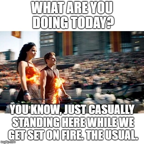 What are you doing today? | WHAT ARE YOU DOING TODAY? YOU KNOW, JUST CASUALLY STANDING HERE WHILE WE GET SET ON FIRE. THE USUAL. | image tagged in hunger games heat | made w/ Imgflip meme maker