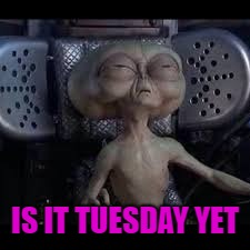 IS IT TUESDAY YET | made w/ Imgflip meme maker
