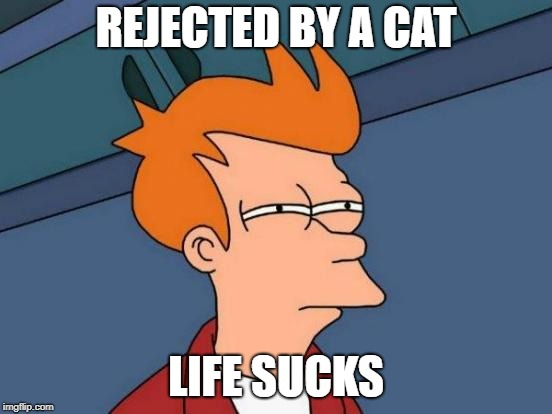 Futurama Fry Meme | REJECTED BY A CAT LIFE SUCKS | image tagged in memes,futurama fry | made w/ Imgflip meme maker