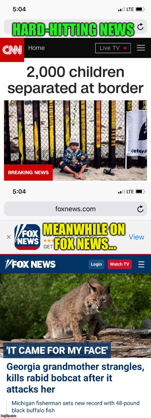 HARD-HITTING NEWS MEANWHILE ON FOX NEWS... | image tagged in memes,cnn real news,fox fake news | made w/ Imgflip meme maker
