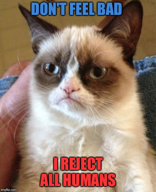 Grumpy Cat Meme | DON'T FEEL BAD I REJECT ALL HUMANS | image tagged in memes,grumpy cat | made w/ Imgflip meme maker