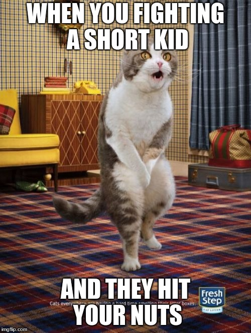 Gotta Go Cat | WHEN YOU FIGHTING A SHORT KID AND THEY HIT YOUR NUTS | image tagged in memes,gotta go cat | made w/ Imgflip meme maker