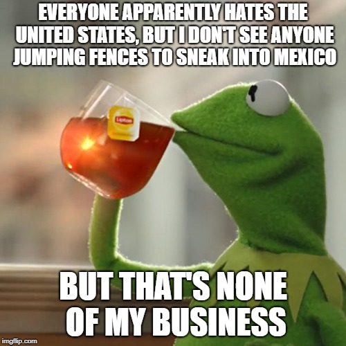 But Thats None Of My Business | EVERYONE APPARENTLY HATES THE UNITED STATES, BUT I DON'T SEE ANYONE JUMPING FENCES TO SNEAK INTO MEXICO BUT THAT'S NONE OF MY BUSINESS | image tagged in memes,but thats none of my business,kermit the frog | made w/ Imgflip meme maker