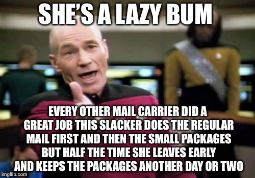 Picard Wtf Meme | SHE'S A LAZY BUM EVERY OTHER MAIL CARRIER DID A GREAT JOB THIS SLACKER DOES THE REGULAR MAIL FIRST AND THEN THE SMALL PACKAGES BUT HALF THE  | image tagged in memes,picard wtf | made w/ Imgflip meme maker