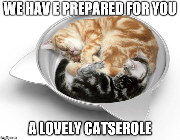 WE HAV E PREPARED FOR YOU A LOVELY CATSEROLE | made w/ Imgflip meme maker