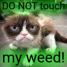 DO NOT touch my weed! | made w/ Imgflip meme maker