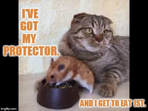 I'VE  GOT     MY    PROTECTOR. AND I GET TO EAT 1ST. | made w/ Imgflip meme maker