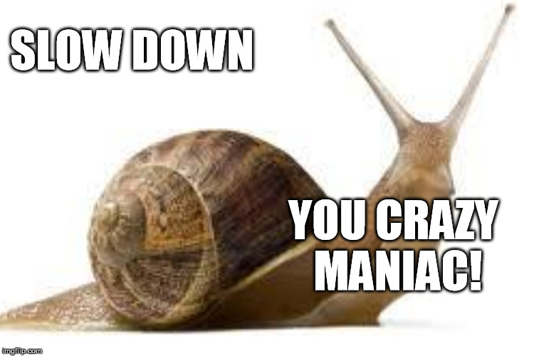 SLOW DOWN YOU CRAZY MANIAC! | made w/ Imgflip meme maker
