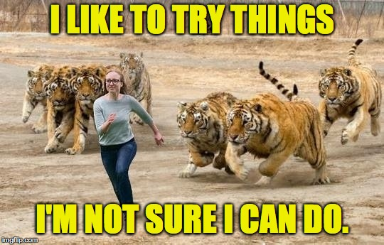 Are you challenging yourself? | I LIKE TO TRY THINGS I'M NOT SURE I CAN DO. | image tagged in tiger exhibit challenge,memes | made w/ Imgflip meme maker