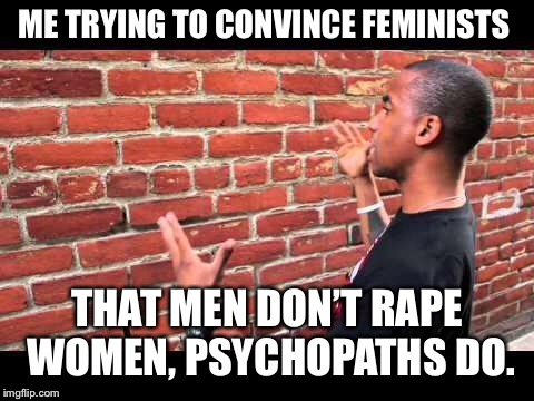 Brick wall guy | ME TRYING TO CONVINCE FEMINISTS THAT MEN DON'T **PE WOMEN, PSYCHOPATHS DO. | image tagged in brick wall guy | made w/ Imgflip meme maker