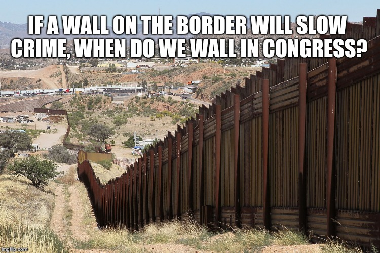 IF A WALL ON THE BORDER WILL SLOW CRIME, WHEN DO WE WALL IN CONGRESS? | image tagged in border wall 02 | made w/ Imgflip meme maker