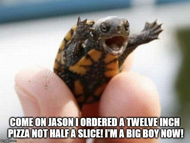 happy baby turtle | COME ON JASON I ORDERED A TWELVE INCH PIZZA NOT HALF A SLICE! I'M A BIG BOY NOW! | image tagged in happy baby turtle | made w/ Imgflip meme maker