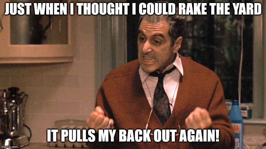 They pull me back in Godfather | JUST WHEN I THOUGHT I COULD RAKE THE YARD IT PULLS MY BACK OUT AGAIN! | image tagged in they pull me back in godfather | made w/ Imgflip meme maker