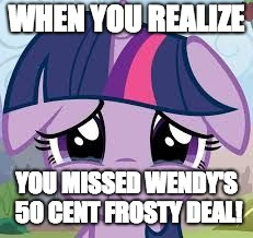 Sadness! | WHEN YOU REALIZE YOU MISSED WENDY'S 50 CENT FROSTY DEAL! | image tagged in sad twilight,memes,wendy's,frosty,ponies,sadness | made w/ Imgflip meme maker